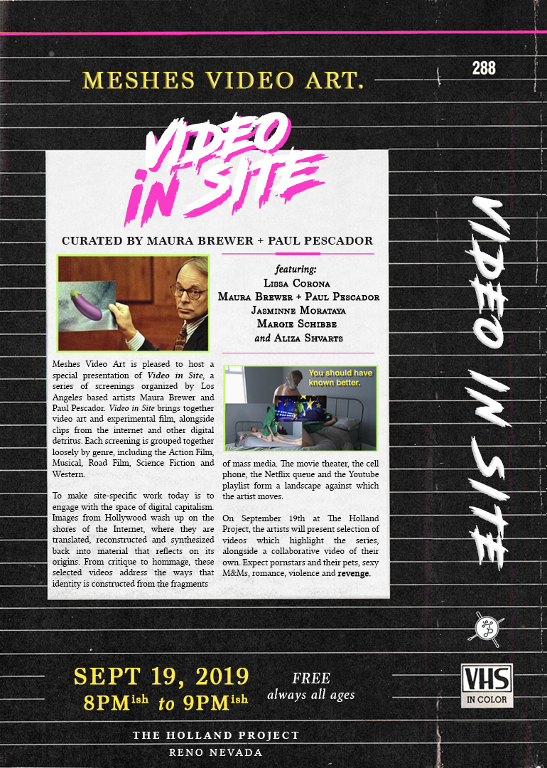 Meshes Video Art presents Video in Site